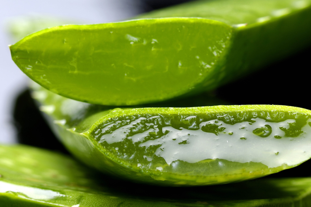 Aloe-Vera-gel-close-image